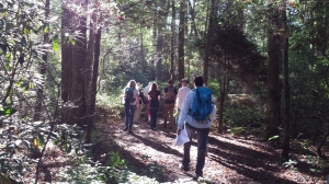 "Nature enthusiasts learn and share along the ""all species"" walk during the Pink Beds BioBlitz this past weekend."