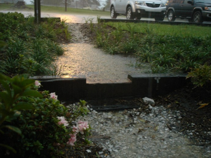 rain garden swale (gallo)