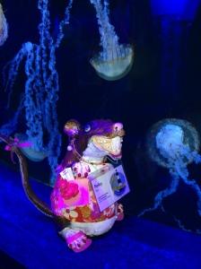 Perky at the aquarium