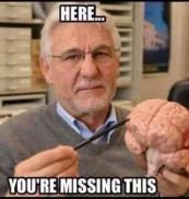Missing Brain